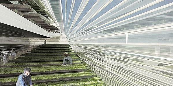 垂直型農業