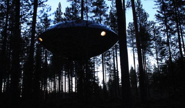 tree hotel 9